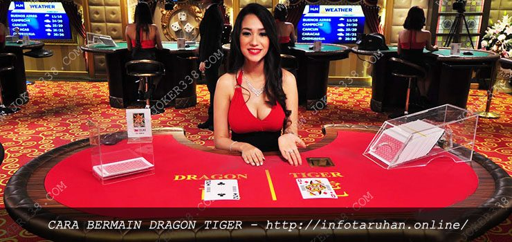Cara Bermain Dragon Tiger